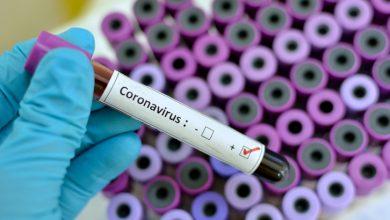 Photo of ملک بھر میں کورونا وائرس کے فعال کیسز کی تعداد 9 ہزار 461 ہوگئی